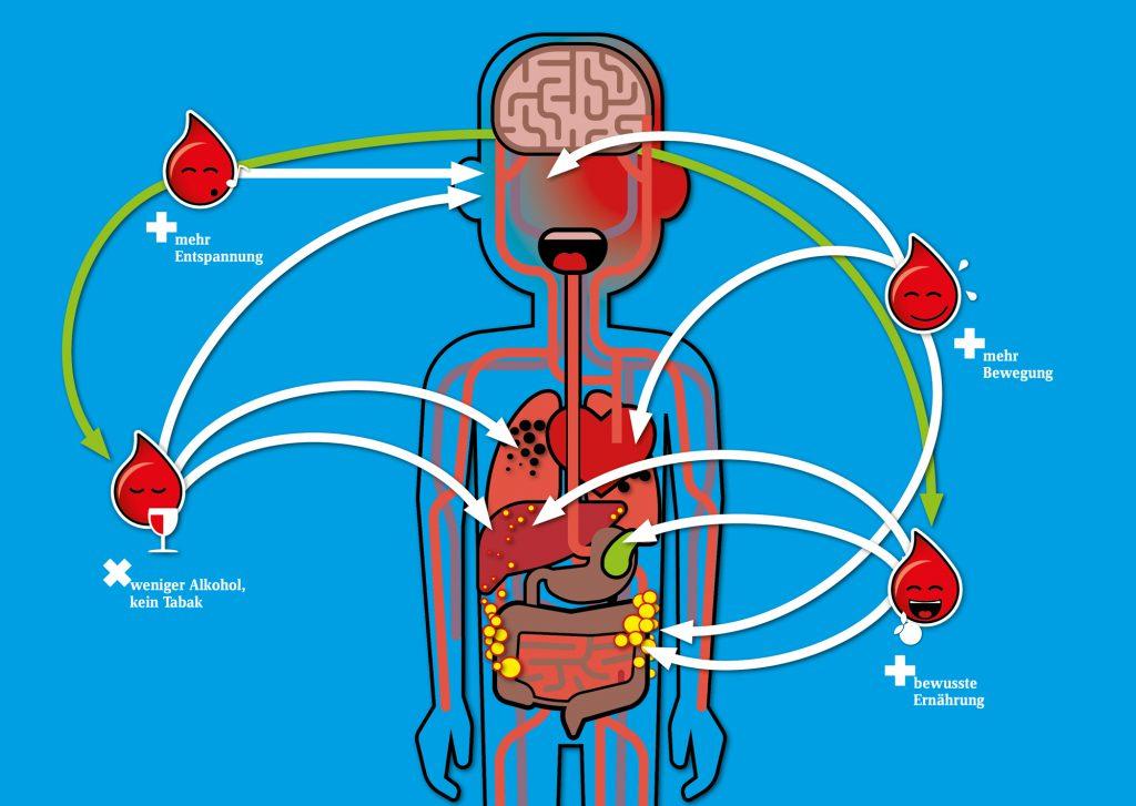 Den Stoffwechsel wieder ins Gleichgewicht bringen: Viele potenziell gefährliche Störungen im Stoffwechselkreislauf können wir selbst durch Verhaltensänderungen wieder beheben.
